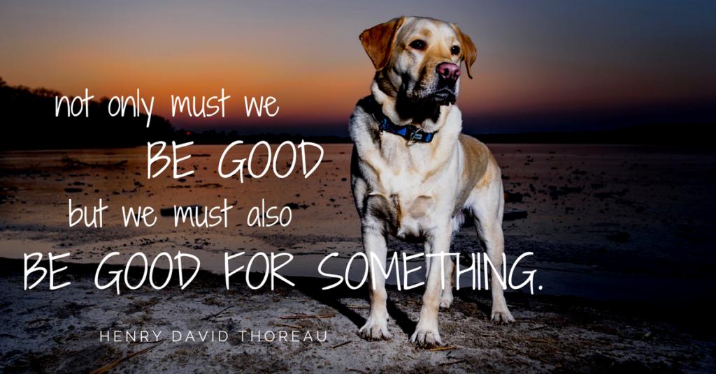 Be Good volunteer quote