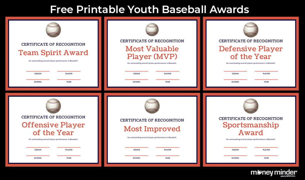 Baseball Youth Sports Awards