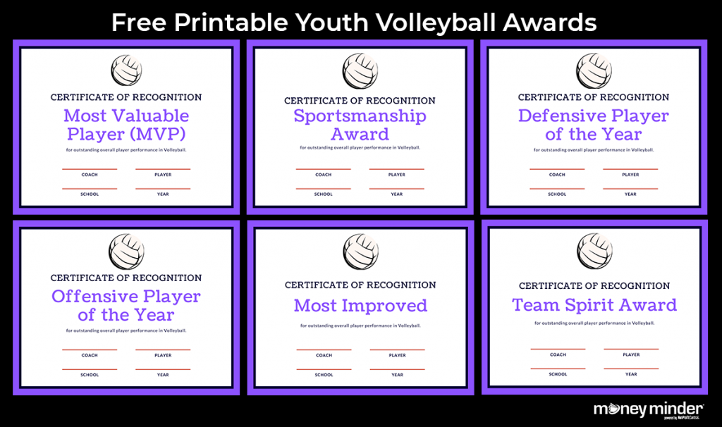 Volleyball Youth Sports Awards