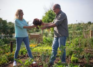 HOA Community Garden Rules
